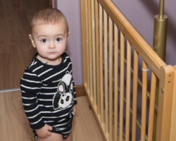 Ultimate Guide to Best Retractable Baby Gate 2021: Full Reviews & Buying Guide