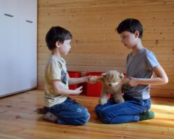 Sibling Rivalry: Creating a Spirit of Cooperation